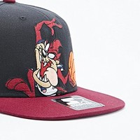 Starter Taz Space Jam Snapback Cap in Black and Burgundy - Urban Outfitters