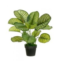 "Allstate Pack of 2 Potted Artificial Variegated Green Apple Leaf Plants 22"" Artificial Plants"