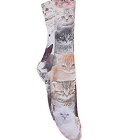 With Love From CA Cats On Cats Socks at PacSun.com