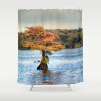 Lonely Little Cypress Tree Shower Curtain by Jai Johnson
