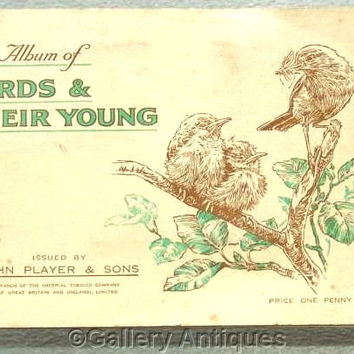 Birds & Their Young Full Set of 50 Cigarette Cards in Original Album by John Player and Sons Issued in 1937 (ref 3091a)