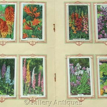 Garden Flowers Full Set of 48 Original Cigarette Cards in Official (Park Drive) Album by Gallaher Ltd Issued in 1938 (ref: 3091)