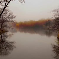 Autumn photography, silver pond in fall, fog, gray brown dark - rustic home decor -12x8 photograph - earth tones reds oranges