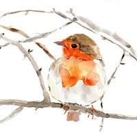 Art Print , Robin on a branch, Print of watercolor, Wild life print, Robin watercolor, Birds art, A4 8.3 x 11.7 nursery decor,  Christmas