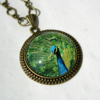 Peacock , Bronze Plated Drop Cabochon Setting on a Chain