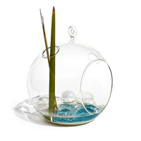 GLASS TERRARIUM | Modern Home Decor, Desktop, Garden, Zen, Water Pebbles | UncommonGoods