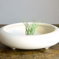 Vintage Modern Floating Planter