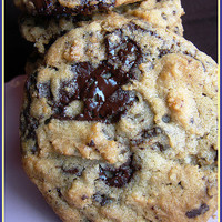 TENDER CRUMB: My FAVORITE Chocolate Chip Cookie