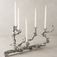 Grapevine Candelabra by Anthropologie Silver One Size Decor