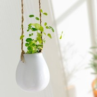 INFMETRY:: Mini Hanging Pot - Home&Decor