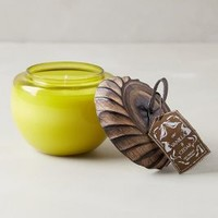 Acorn Candle by Illume