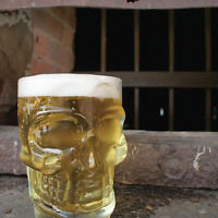 Glass Skull Beer Stein by Kikkerland | eBay