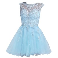 VILAVI Women's A-line Round Brought Short Tulle Crystal Homecoming Dresses 2 Light Sky Blue