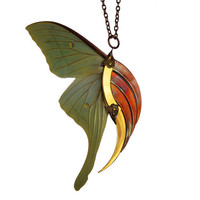 Statement Necklace - Stunning Blade Wing - 24K Gold Plated - One Of A Kind - Real Luna Moth Wings - Free Shipping