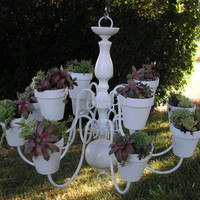 Gorgeous White Plantelier by Gardenspire on Etsy