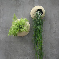 Small Terracotta Wall Planter Sand Color