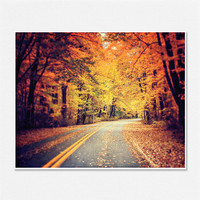 Autumn Road Landscape Photography Trees Forest Woods Gold Red Sepia Yellow Brown Presque Isle Erie Fall - 8x10 - Vibrant Autumn Decorating.