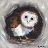 Original Bird Painting, Baby Barn Owl 6x6 with Mini Easel