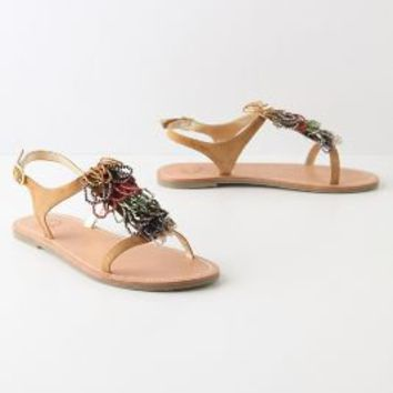 Perviance T-Straps - Anthropologie.com