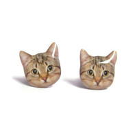 Cute Cat Kitten Stud Earrings - A14E84