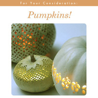 More Design Please - MoreDesignPlease - Pumpkins on the Mind