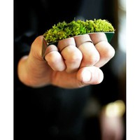 Multi-Finger Ring Moss