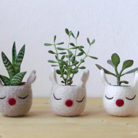 Rudy the red nosed reindeer  / Christmas decoration / Natural colors / Succulent planter / deck the hall  / set of 3 - Choose your color!