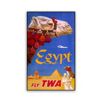 Vintage Travel Poster Egyptian Camel 8x13 PopMount Ready to Hang FREE SHIPPING