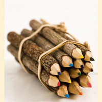 Log Colored Pencils
