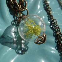 Glass Orb Moss Necklace