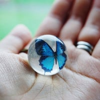 Original Butterfly Globe Necklace Blue Ball Nature Inspired Transparent Resin Ball Magical Fantasy