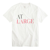 At Large For J.Crew We Are At Large Broken-In Tee