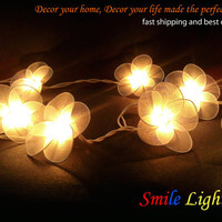 20 PCs. White nylon flower string light with 3 m. wire and adapter for room and party decoration