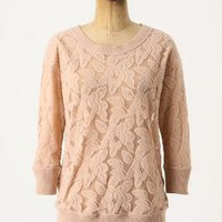 Brushed Lace Pullover - Anthropologie.com