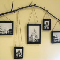 Crafts / Pictures hanging from branch