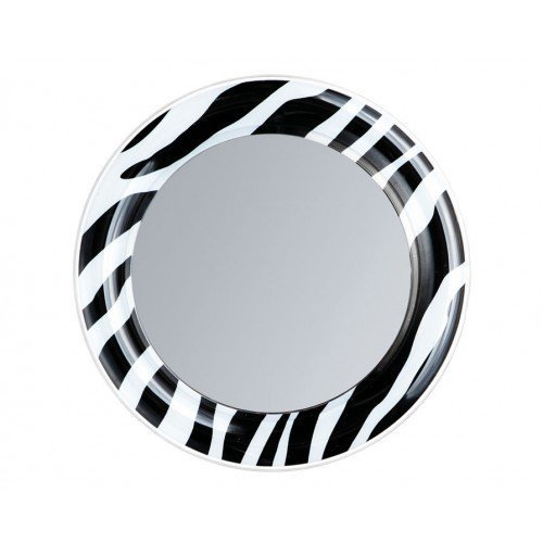 B/W Zebra Locker Mirror