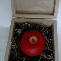 Apple Fruit Soap in wooden box £7.50
