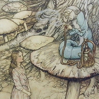 Vintage Alice In Wonderland, Caterpillar's Hookah Advice, Arthur Rackham, Childrens Fantasy Print (Book Plate No. 78)