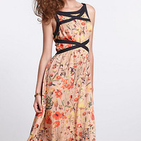 Amapolas Banded Midi Dress