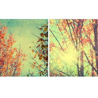Two Fall Foliage Photographs,  Autumn New England Photos,  Abstract Landscape Phootography, Shabby Chic Home