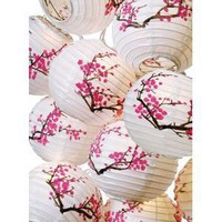 Amazon.com: Plum Blossom Paper Lantern Set w/ Light #ml-21: Home Improvement