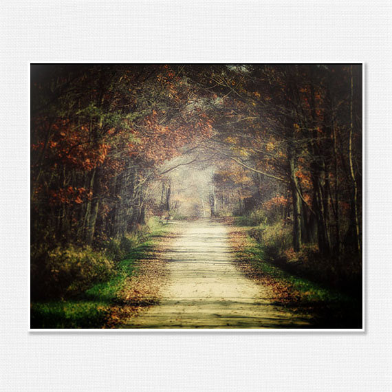 Rustic Fall Landscape Photography Autumn Decor Woodland Country Chic Wall Art Fog Brown Green Trees Forest Woods - 8x10 - Fall Leaves.