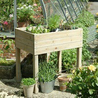 daisyhardcastle — Daisy Hardcastle Raised Planter