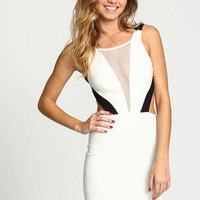 Ivory Colorblock Mesh Bodycon Dress - LoveCulture
