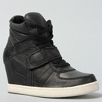 Amazon.com: Ash Shoes The Cool Ter Sneaker in Black: Shoes