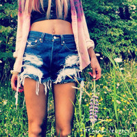 Urban Eclectics  High Waisted Distressed Shorts