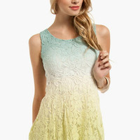 Lace Fade Dress $35