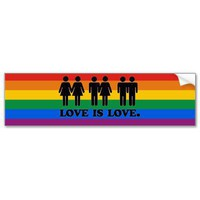 LOVE IS LOVE BUMPER STICKER from Zazzle.com