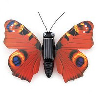 buy cheap Motion Solar Energy Simulation Flying Wobble Butterfly -Solar Education Toy wholesale on China Gadget Land