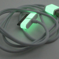 Glow in the dark iphone charger - White